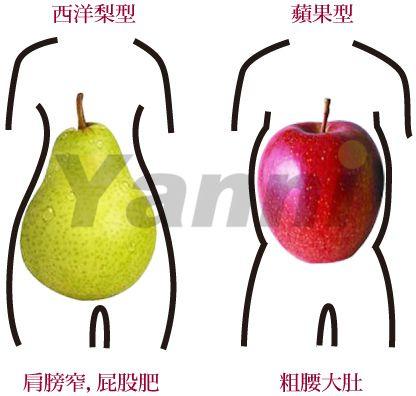 隱藏型的肥胖─西洋梨型下半身肥胖減肥方法
